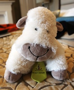 Minty The Lamb